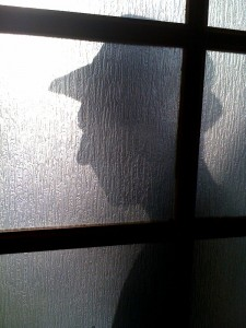 Fedora-shadow1-225x300