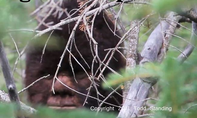 Todd Standing To Appear on Finding Bigfoot – Season 2