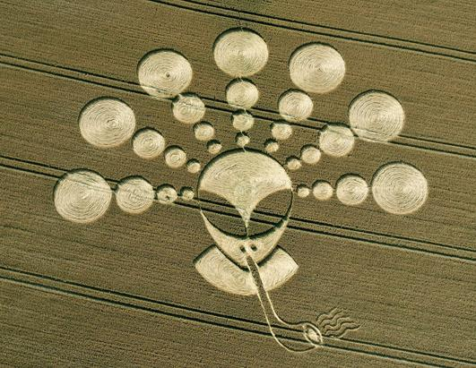 Pipe Smoking Alien Crop Circle