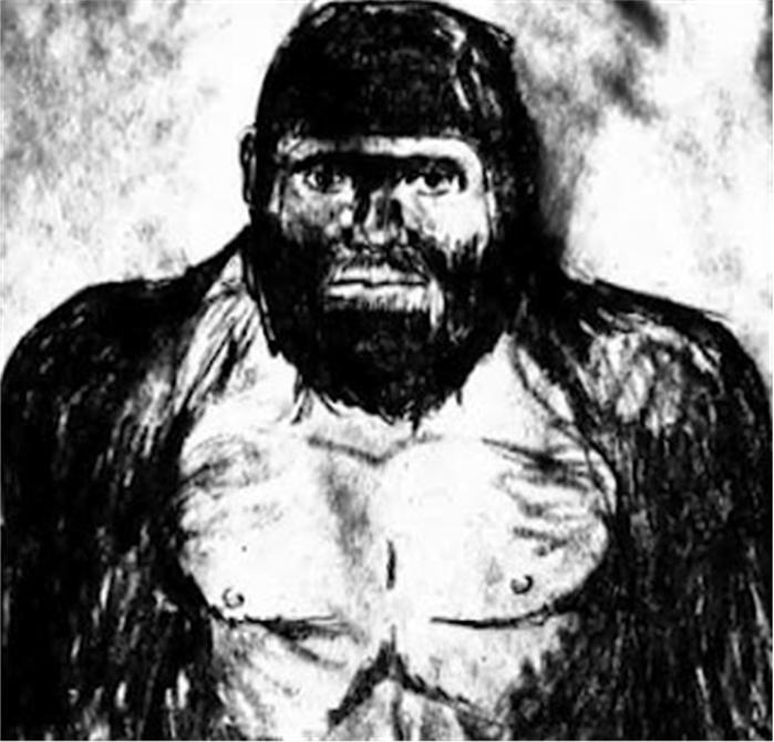 Friday Audio: Interview With Bigfoot Witness