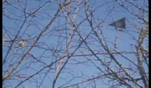 Another 'Dudley Dorito' UFO Video?