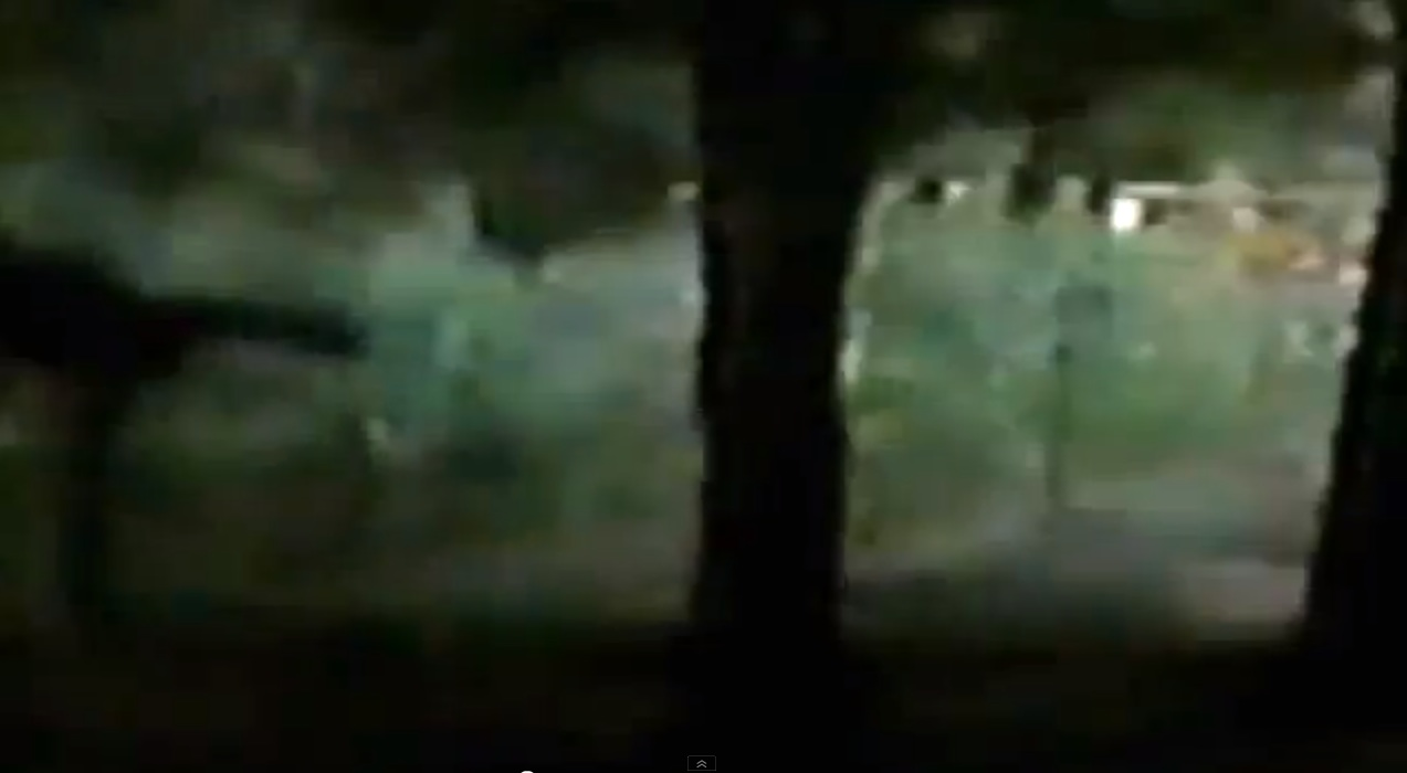 Video Shows Supposed Sasquatch Climbing Fence