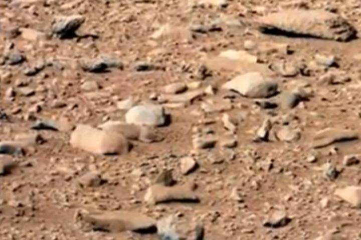Curiosity Rover Snaps Photo Of Rodent?