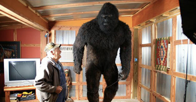 bigfoot at home