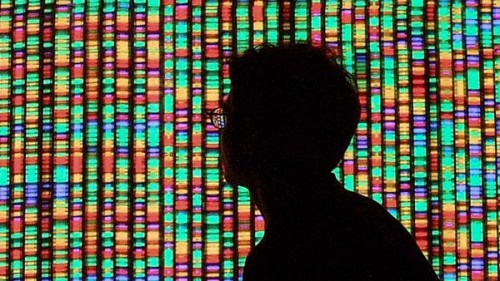 human-genome-ten-years-in_17889_600x450