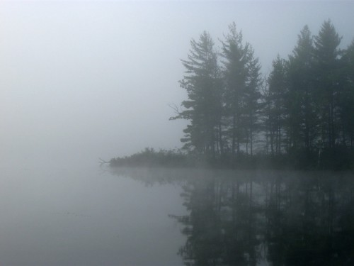 foggy_lake
